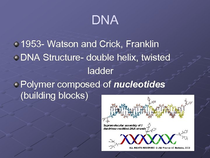 DNA 1953 - Watson and Crick, Franklin DNA Structure- double helix, twisted ladder Polymer