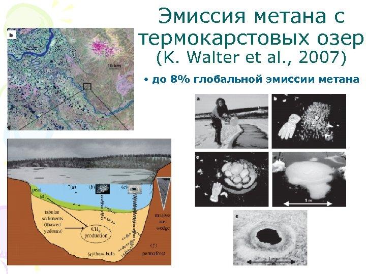 Эмиссия метана с термокарстовых озер (K. Walter et al. , 2007) • до 8%
