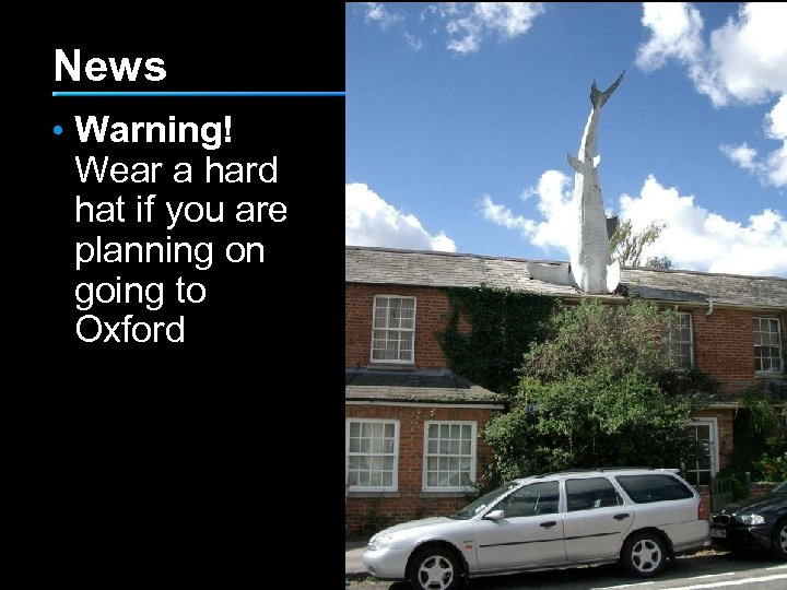 News • Warning! Wear a hard hat if you are planning on going to