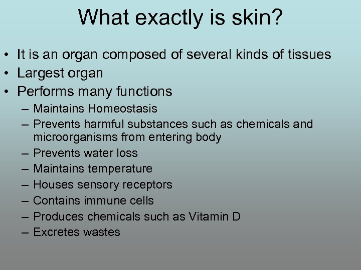 What exactly is skin? • It is an organ composed of several kinds of