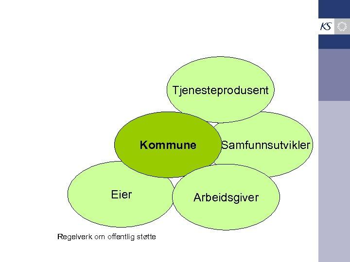Tjenesteprodusent Kommune Eier Regelverk om offentlig støtte Samfunnsutvikler Arbeidsgiver