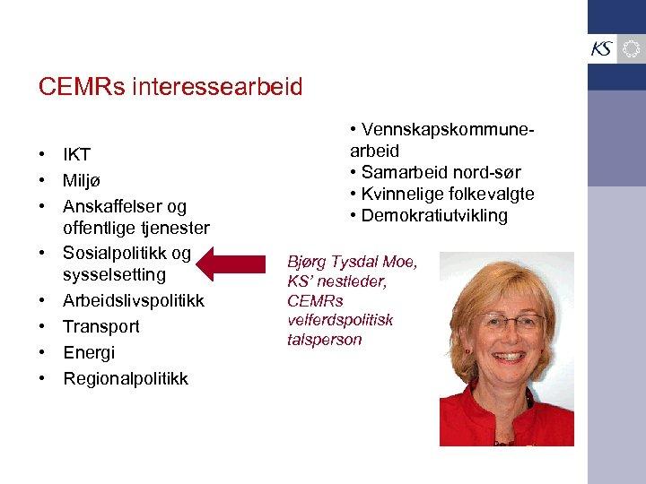 CEMRs interessearbeid • IKT • Miljø • Anskaffelser og offentlige tjenester • Sosialpolitikk og