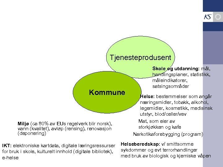 Tjenesteprodusent Kommune Miljø (ca 80% av EUs regelverk blir norsk), vann (kvalitet), avløp (rensing),