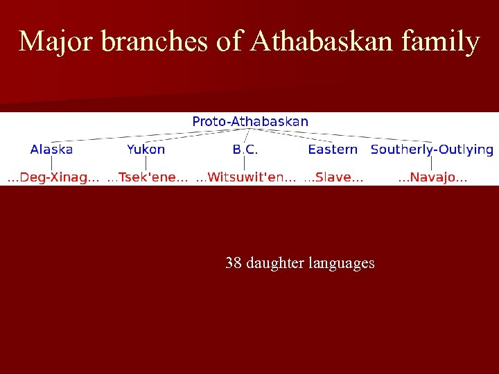 Major branches of Athabaskan family 38 daughter languages
