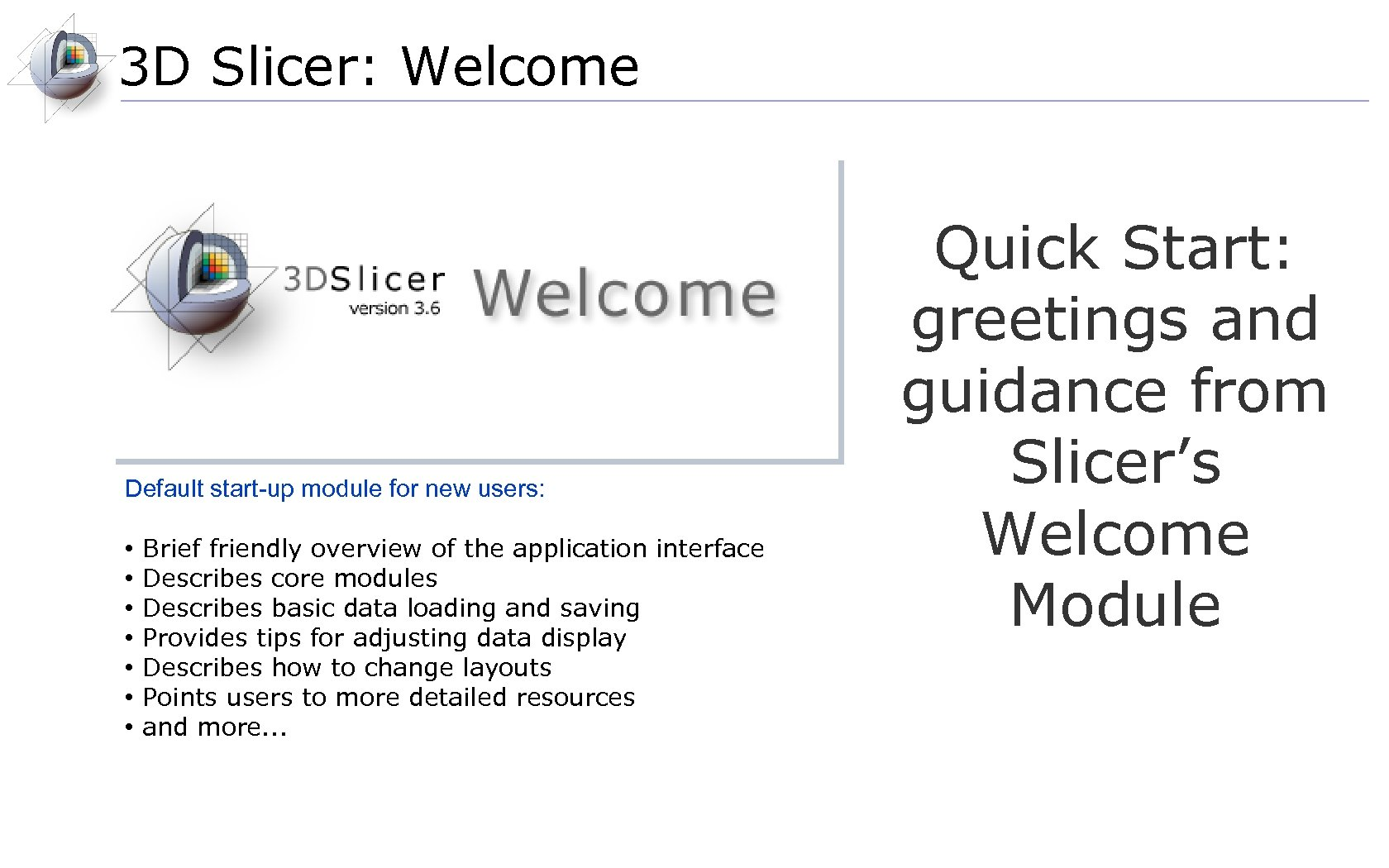3 D Slicer: Welcome Default start-up module for new users: • • Brief friendly