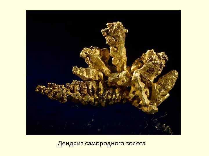 Дендрит самородного золота