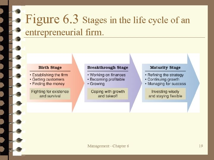 Figure 6. 3 Stages in the life cycle of an entrepreneurial firm. Management -