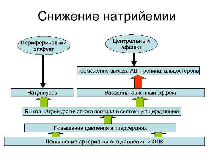 Снижение натрийемии Периферический эффект Центральный эффект Торможение выхода АДГ, ренина, альдостерона Натрийурез Вазодилатационный эффект