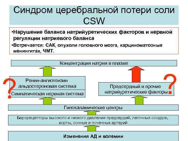 Синдром церебральной потери соли CSW • Нарушение баланса натрийуретических факторов и нервной регуляции натриевого