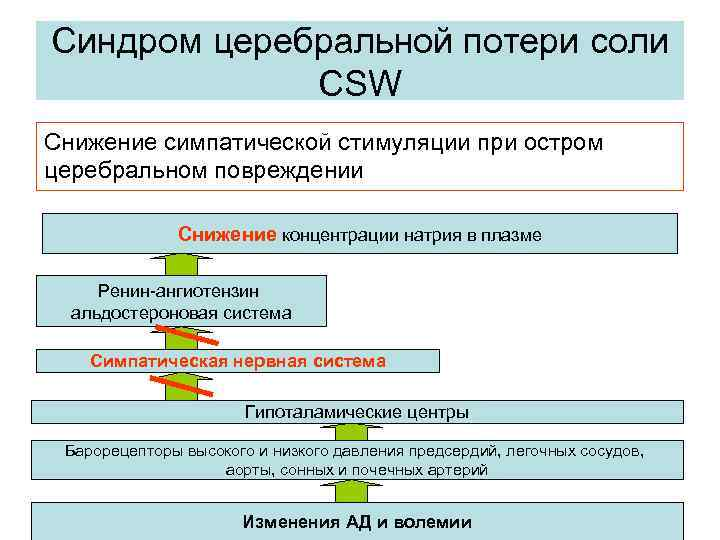 Синдром церебральной потери соли CSW Снижение симпатической стимуляции при остром церебральном повреждении Снижение концентрации