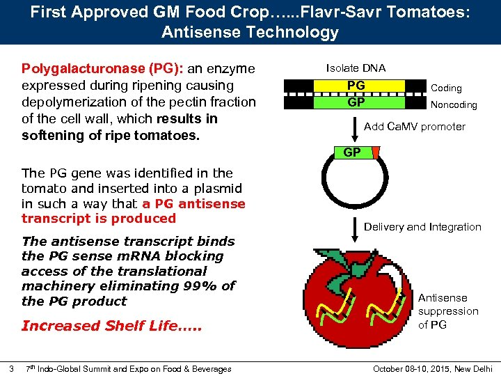 First Approved GM Food Crop…. . . Flavr-Savr Tomatoes: Antisense Technology Polygalacturonase (PG): an