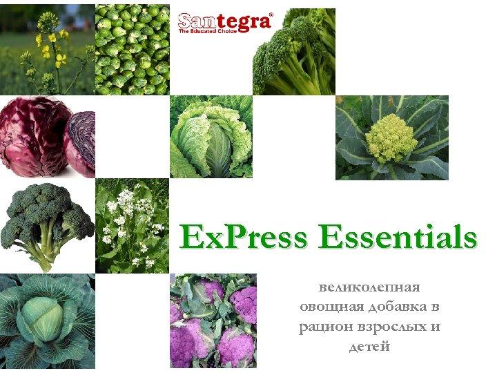 Ex. Press Essentials великолепная овощная добавка в рацион взрослых и детей