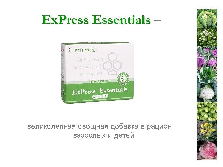 Ex. Press Essentials – великолепная овощная добавка в рацион взрослых и детей