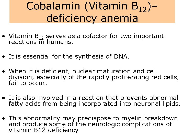 Cobalamin (Vitamin B 12)– deficiency anemia • Vitamin B 12 serves as a cofactor