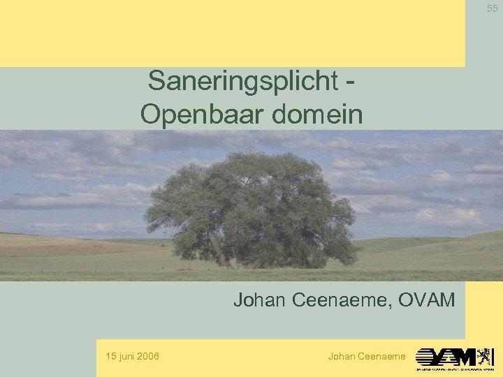 55 Saneringsplicht Openbaar domein Johan Ceenaeme, OVAM 15 juni 2006 Johan Ceenaeme