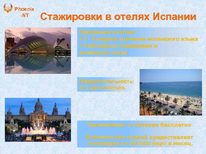 Phoenix -NT Стажировки в отелях Испании Программа состоит : Ø 2 - 4 недели