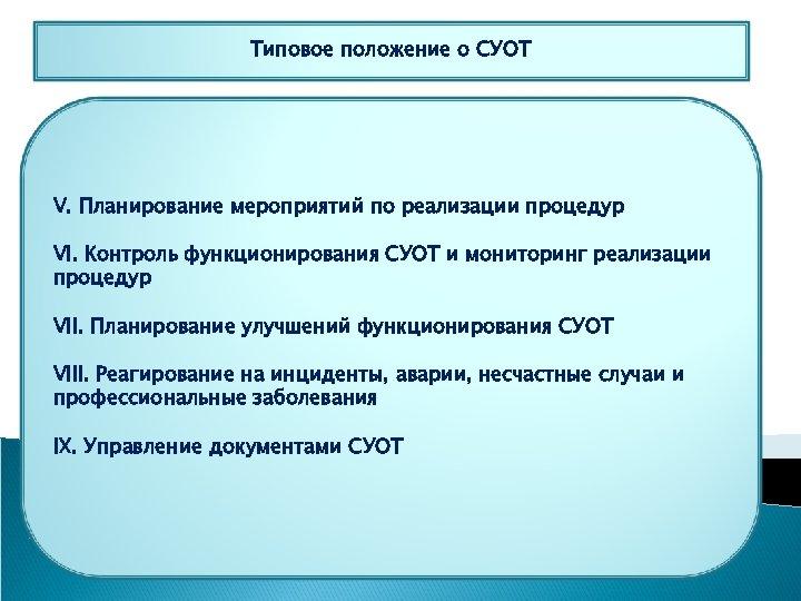 Типовое положение о СУОТ V. Планирование мероприятий по реализации процедур VI. Контроль функционирования СУОТ
