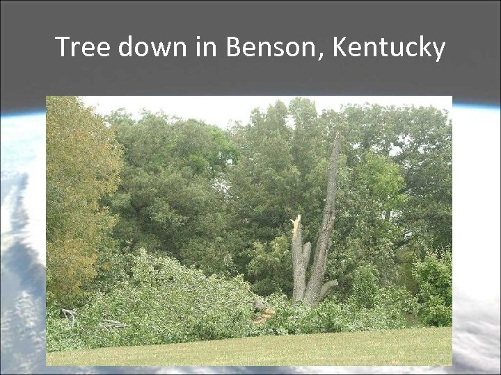Tree down in Benson, Kentucky