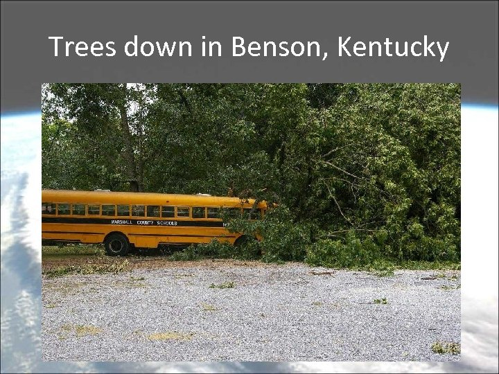 Trees down in Benson, Kentucky