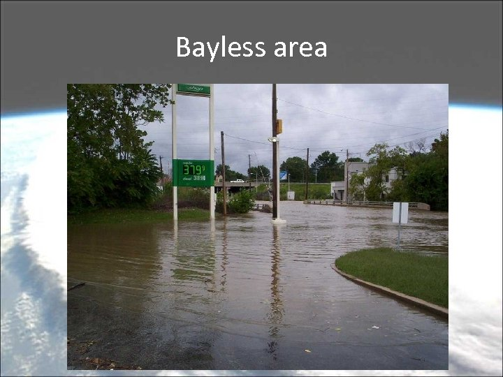 Bayless area