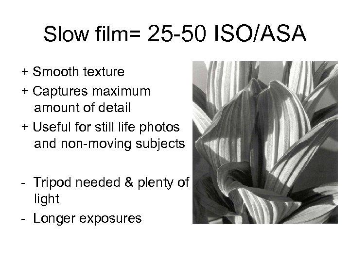 Slow film= 25 -50 ISO/ASA + Smooth texture + Captures maximum amount of detail