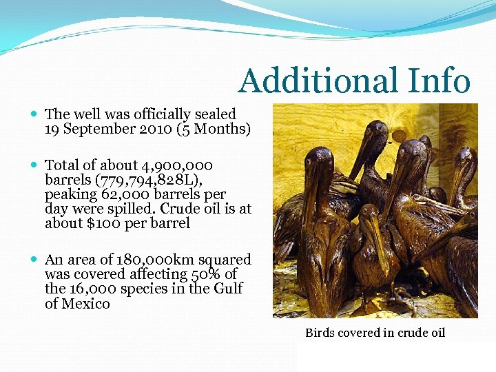 Additional Info The well was officially sealed 19 September 2010 (5 Months) Total of