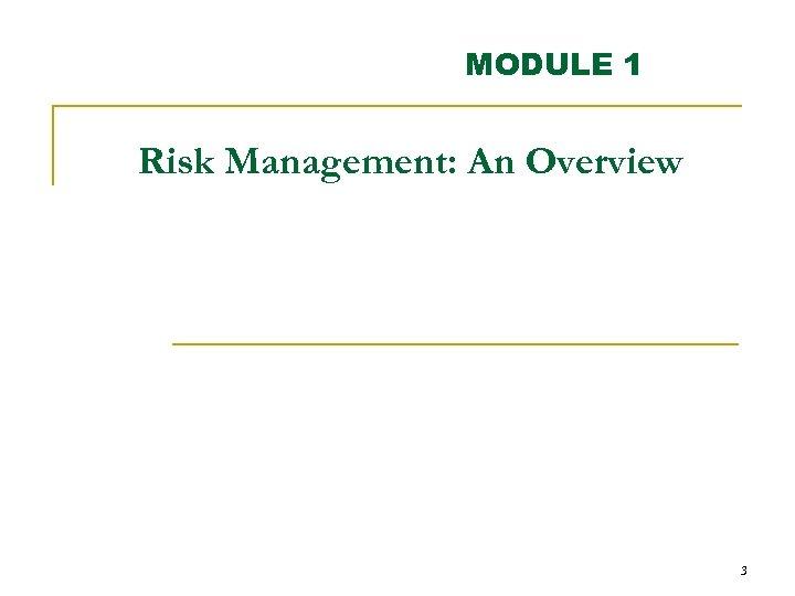 MODULE 1 Risk Management: An Overview 3