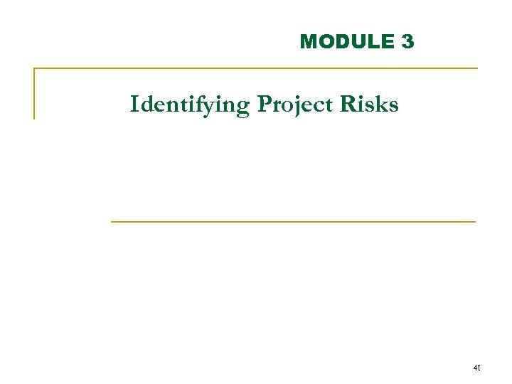 MODULE 3 Identifying Project Risks 41
