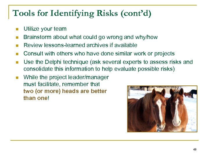 Tools for Identifying Risks (cont'd) n n n Utilize your team Brainstorm about what