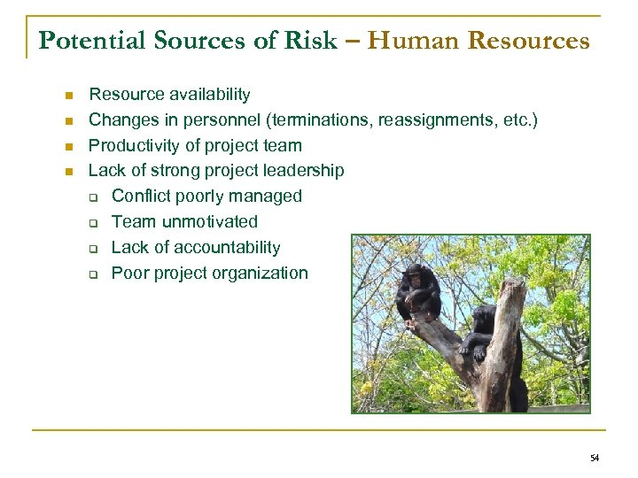 Potential Sources of Risk – Human Resources n n Resource availability Changes in personnel