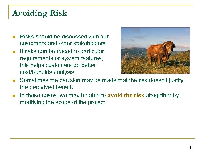 Avoiding Risk n n Risks should be discussed with our customers and other stakeholders