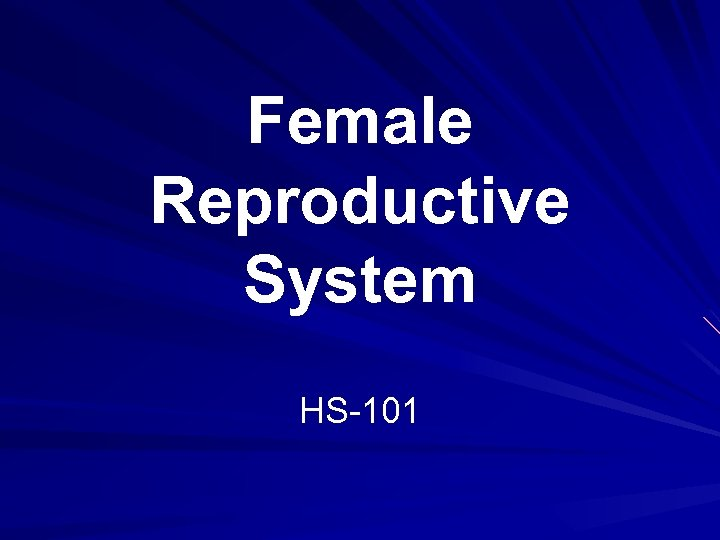 Female Reproductive System HS-101