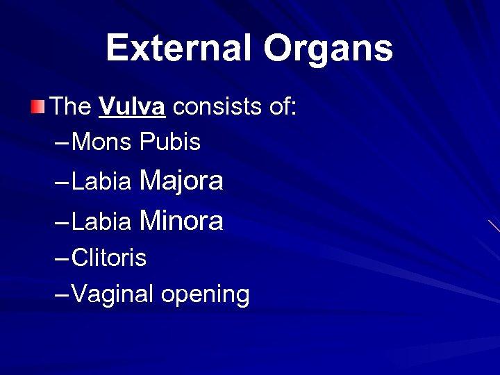 External Organs The Vulva consists of: – Mons Pubis – Labia Majora – Labia