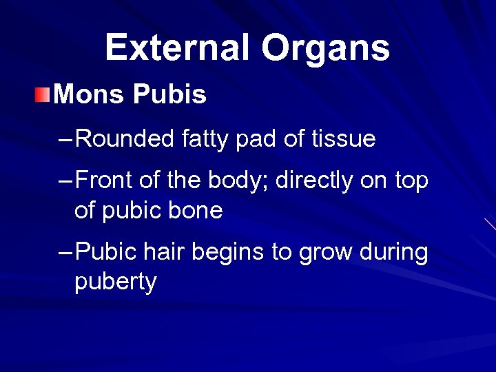 External Organs Mons Pubis – Rounded fatty pad of tissue – Front of the