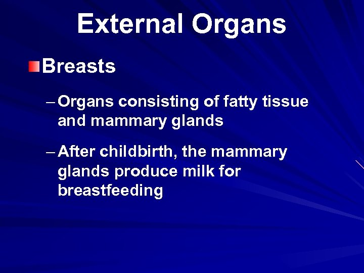 External Organs Breasts – Organs consisting of fatty tissue and mammary glands – After