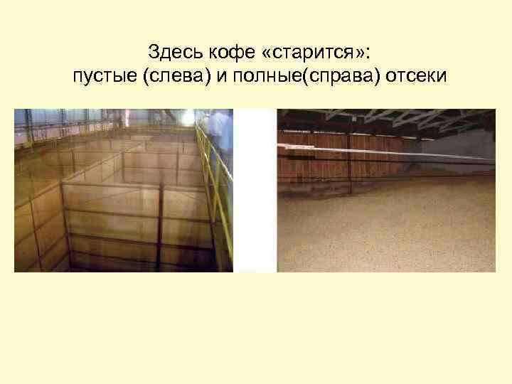 Здесь кофе «старится» : пустые (слева) и полные(справа) отсеки
