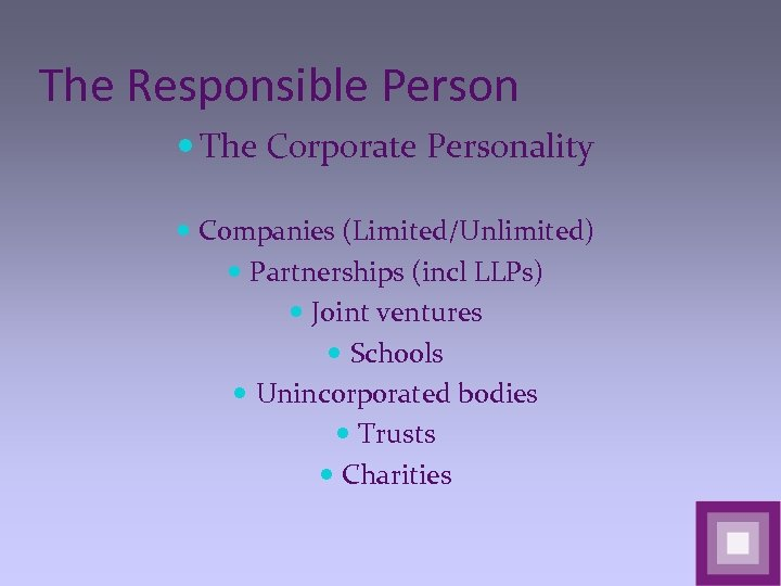 The Responsible Person The Corporate Personality Companies (Limited/Unlimited) Partnerships (incl LLPs) Joint ventures Schools