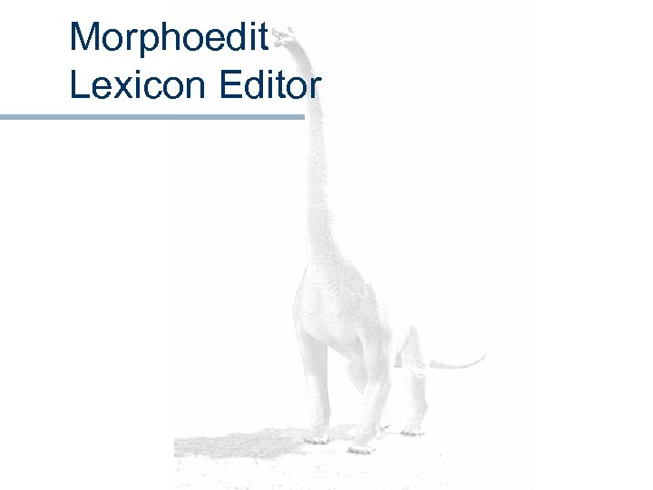 Morphoedit Lexicon Editor
