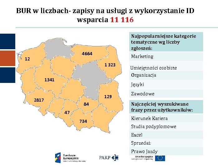 BUR w liczbach- zapisy na usługi z wykorzystanie ID wsparcia 11 116 Najpopularniejsze kategorie