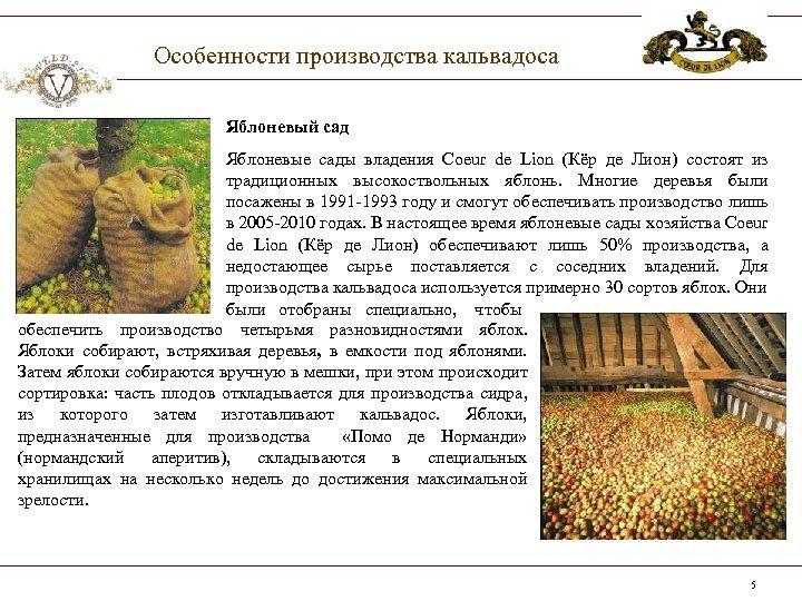 Особенности производства кальвадоса Яблоневый сад Яблоневые сады владения Coeur de Lion (Кёр де Лион)