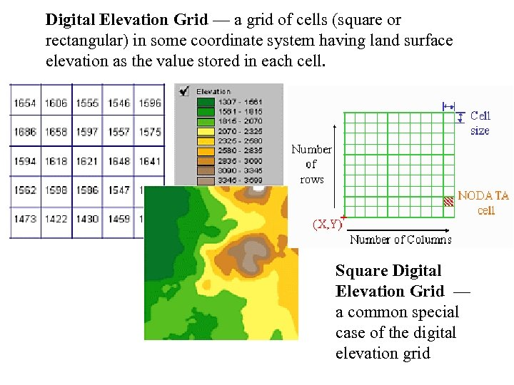Digital Elevation Grid — a grid of cells (square or rectangular) in some coordinate