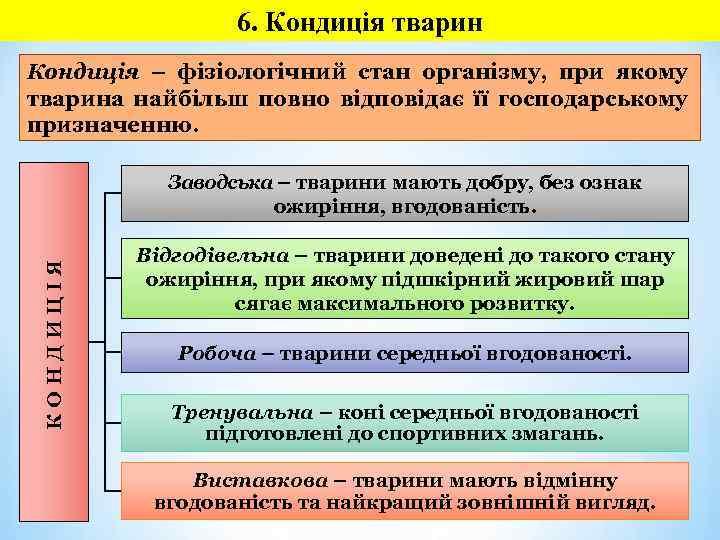 6. Кондиція тварин Кондиція – фізіологічний стан організму, при якому тварина найбільш повно відповідає