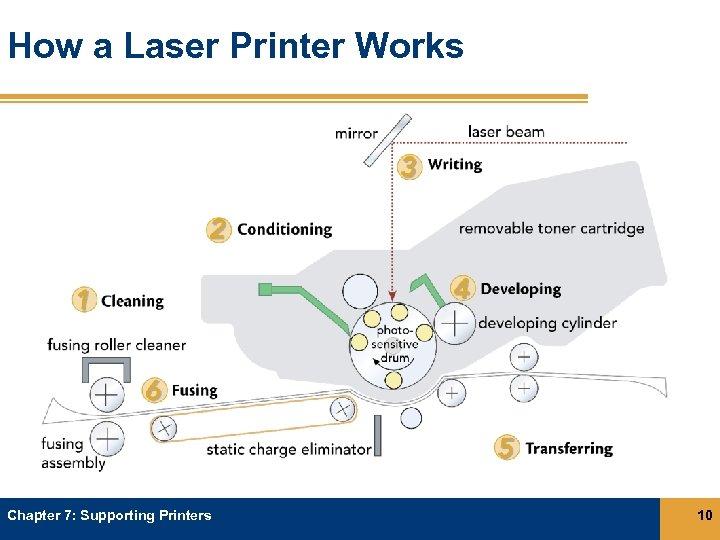 How a Laser Printer Works Chapter 7: Supporting Printers 10