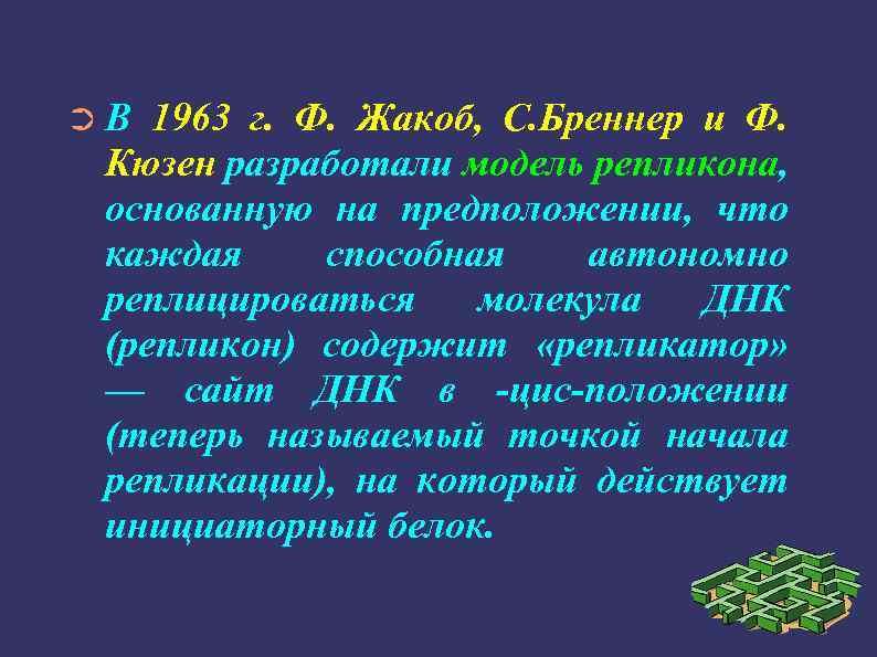 ➲В 1963 г. Ф. Жакоб, С. Бреннер и Ф. Кюзен разработали модель репликона, основанную