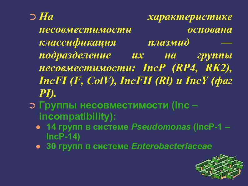 ➲ На характеристике несовместимости основана классификация плазмид — подразделение их на группы несовместимости: Inc.