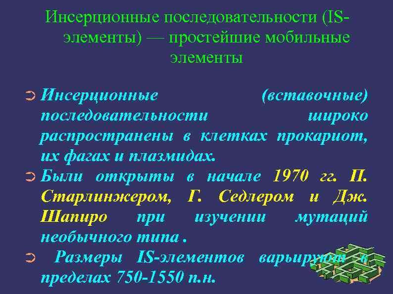 Инсерционные последовательности (ISэлементы) — простейшие мобильные элементы ➲ Инсерционные (вставочные) последовательности широко распространены в