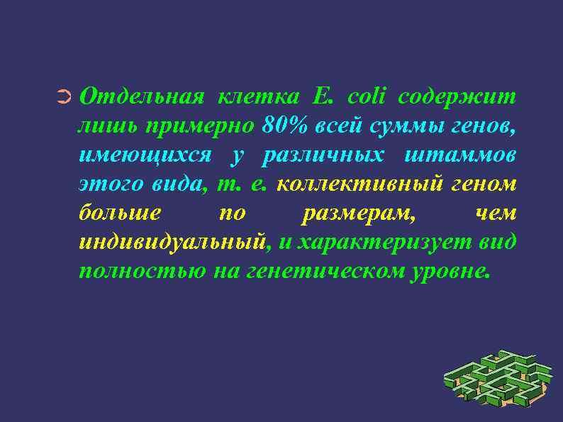 ➲ Отдельная клетка Е. coli содержит лишь примерно 80% всей суммы генов, имеющихся у