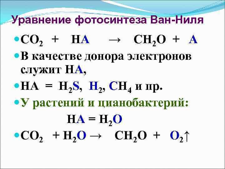 Уравнение фотосинтеза Ван-Ниля СО 2 + НА → СН 2 О + А В