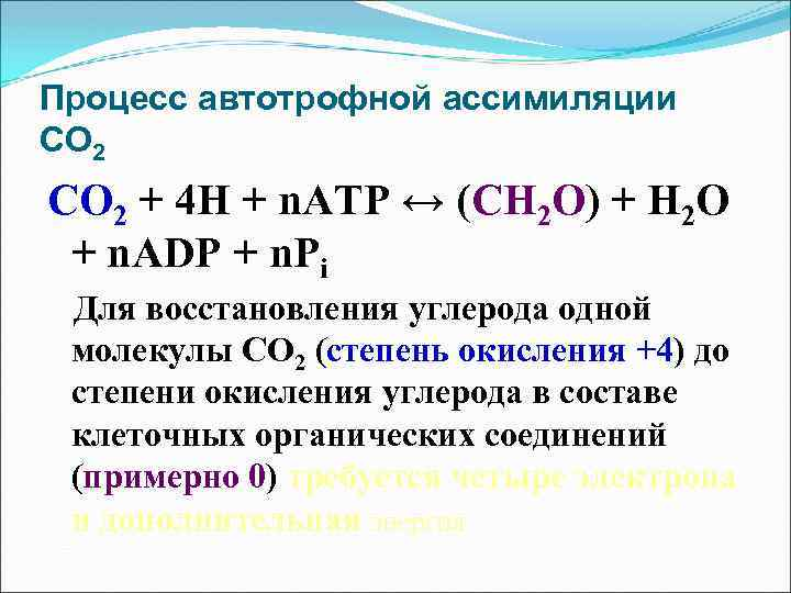 Процесс автотрофной ассимиляции СО 2 + 4 Н + n. АТР ↔ (СН 2