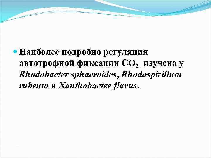 Наиболее подробно регуляция автотрофной фиксации СО 2 изучена у Rhodobacter sphaeroides, Rhodospirillum rubrum